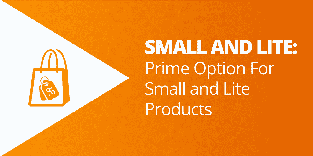 What Is Amazon Small and Lite - How Does Amazon FBA Work - The Source Approach - Amazon Consultant and eCommerce Consultant