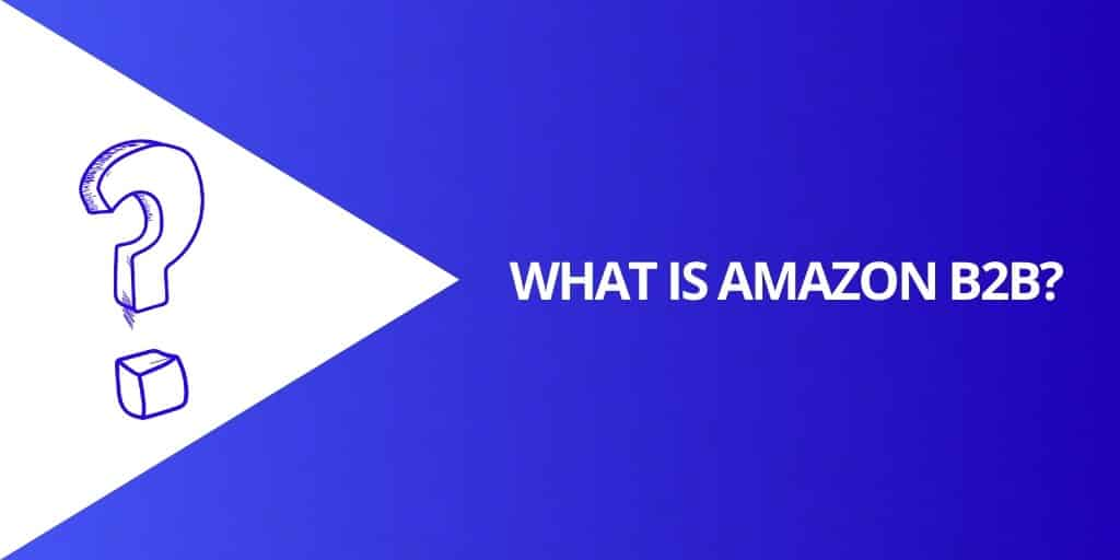 What is Amazon B2B - Amazon B2B_ EVERYTHING You Need To Know About Amazon Business - Source Approach - Amazon Consultant and eCommerce Consultant